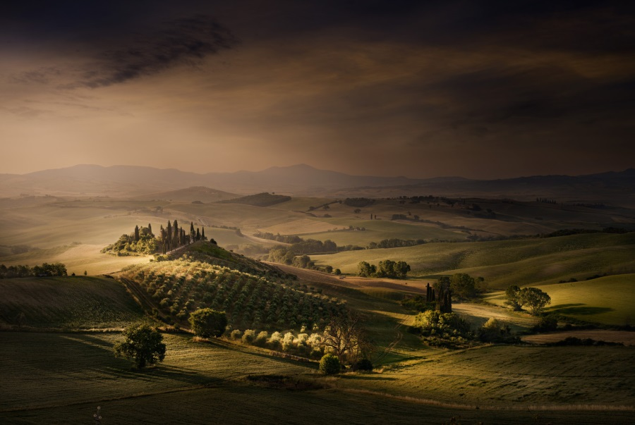 David Osborn, Tuscany Fields