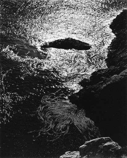 Edward Weston, China Cove