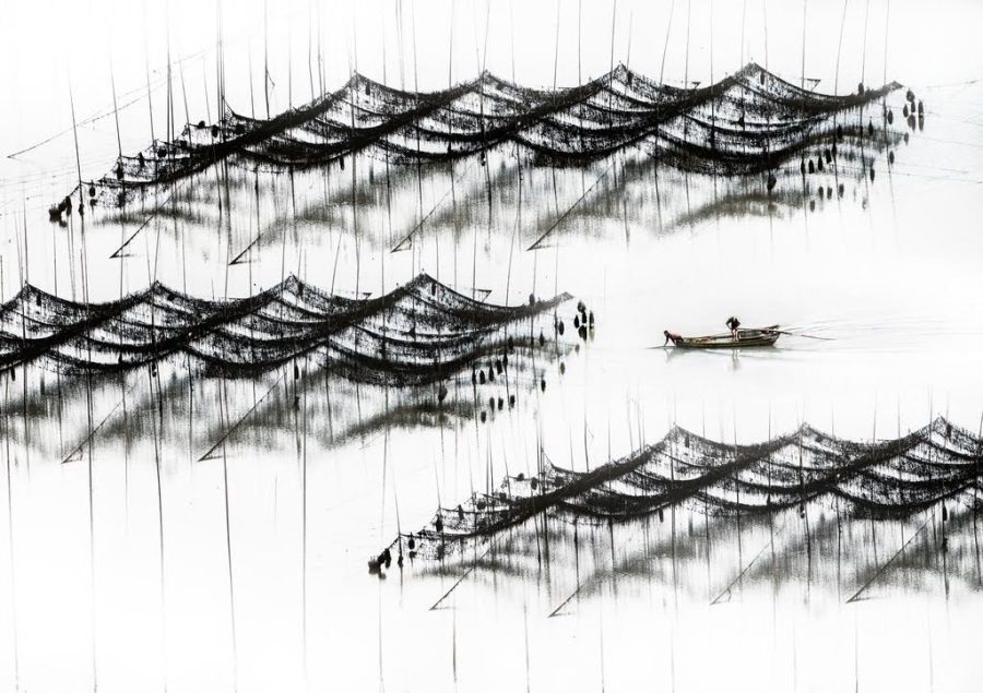 Donghai Xia, Traversing the Waves