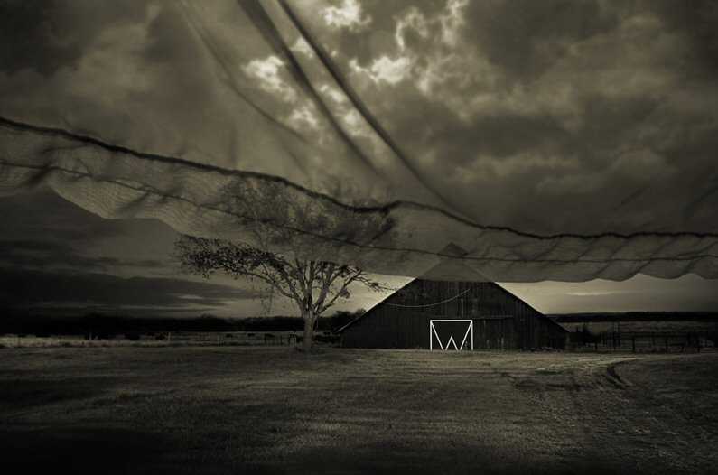 Angela Bacon-Kidwell, Beyond Memory