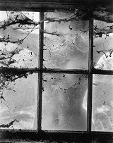 Wynn Bullock, Nude behind Cobwebbed Window