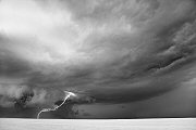 Mitch Dobrowner, Amoeba