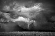 Mitch Dobrowner, Funnel-Cornfield