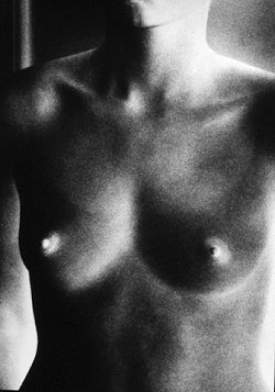 Ralph Gibson, Nude/Negative