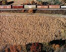 Owen Kanzler, Freight Train in the Autumn Landscape