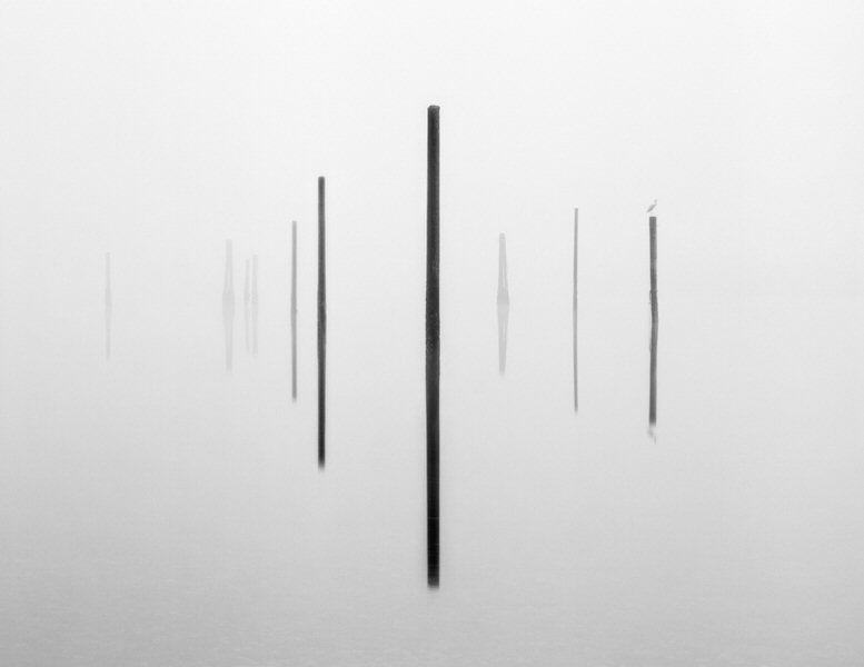 Brian Kosoff, Pier Pilings with Bird